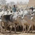 Herdsmen registration to become mandatory – Gboyega Adejumo