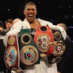 Anthony Joshua Defeats Andy Ruiz Jr to Reclaim World Heavyweight Title